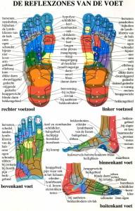 voetreflexzones tek